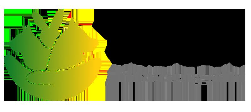 Leben mit Hund-Tierbetreeung-Tibeo02.png